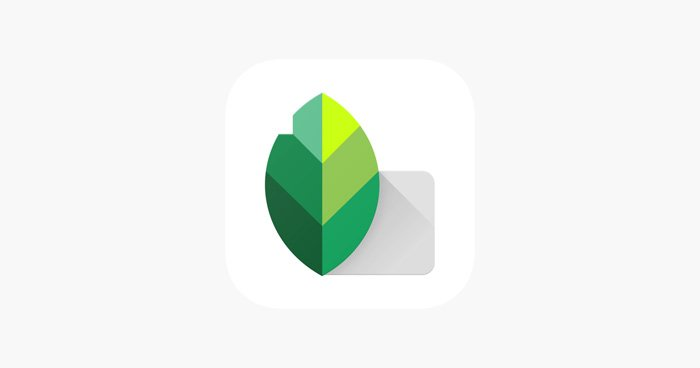 A screenshot of the Snapseed app for adding textures to photos