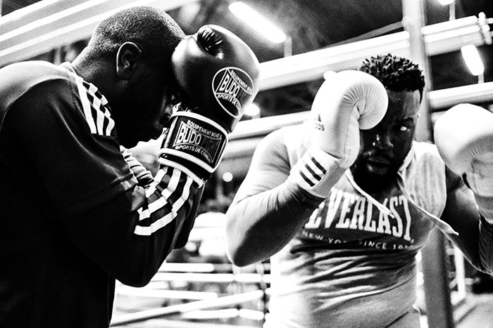montone boxing picture of two fighters in the ring