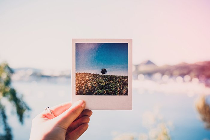 A hand holding an instant photo of a landscape