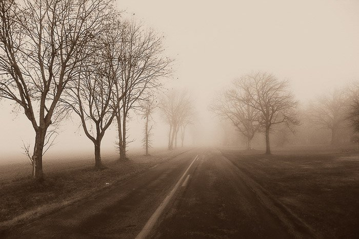 A foggy landscape and road