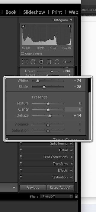 Screenshot of Lightrooms Texture Slider located in the Basic panel
