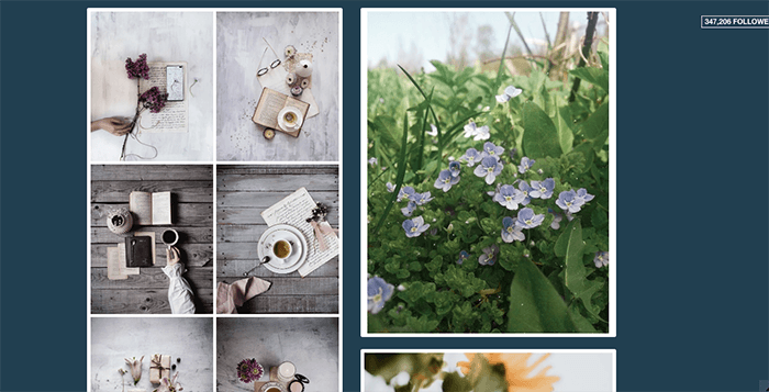 A screenshot from the Floralls Tumblr photography blog