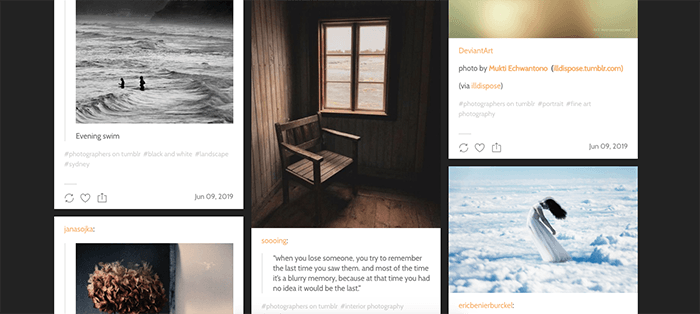 A screenshot from Lensblr Tumblr photography blog