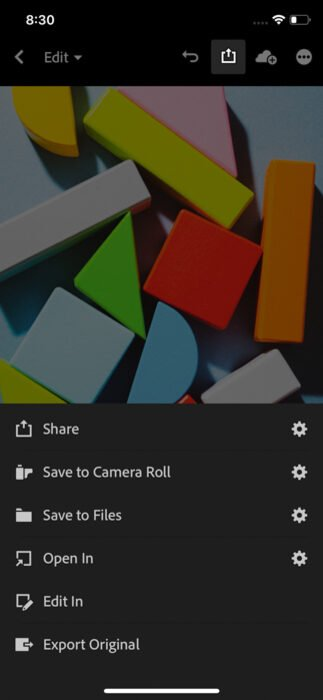 A screenshot showing how to save, share or add photos directly from Lightroom mobile version