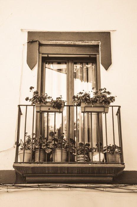 A sepia color image of a windowsill