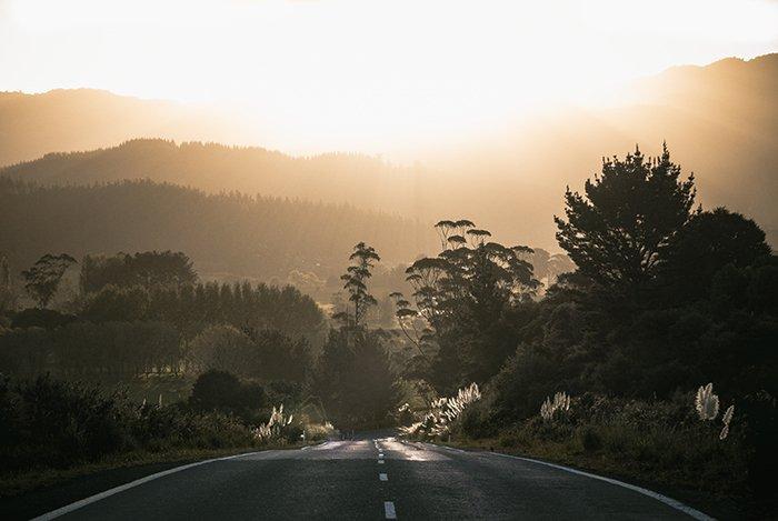 Golden hour in rural New Zealand. beautiful pictures of new zealand