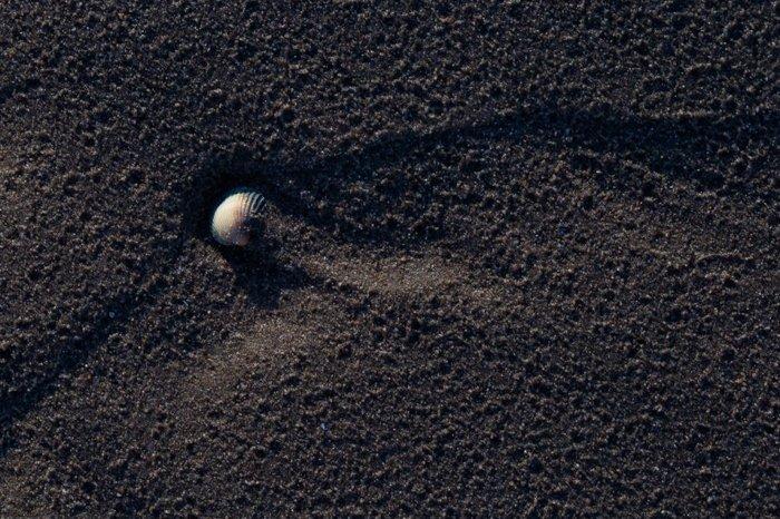 macro photo examples - sand