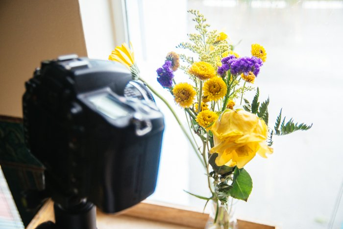 a DSLR set up to take a macro shot of a bunch of flowers on a window sill - macro photography lighting tips