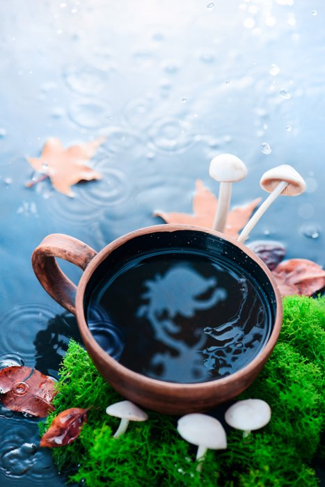 a creative still life featuring a cool reflection in a coffee cup