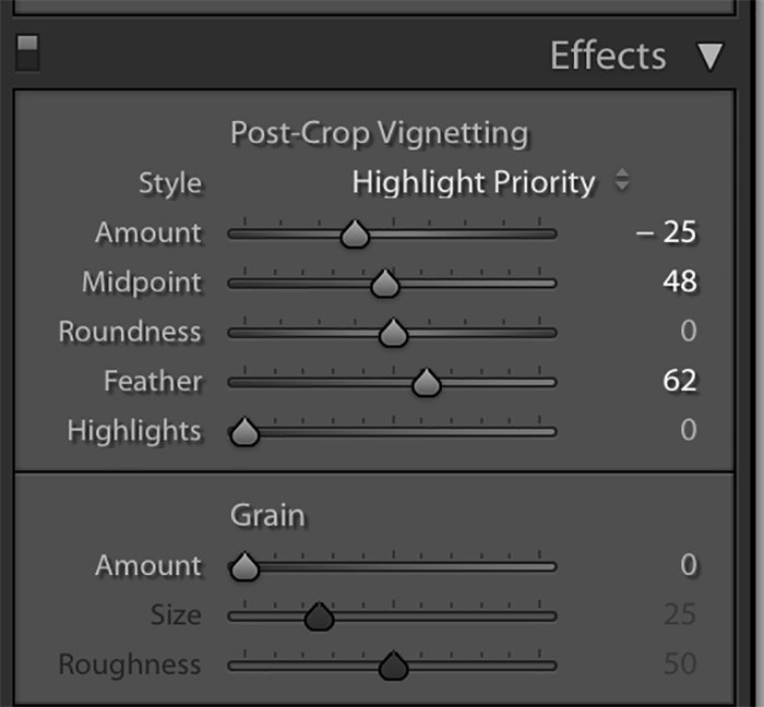 a screenshot showing how to use Lightroom for macro editing