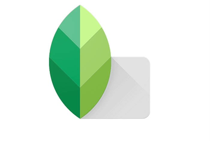 The snapseed icon