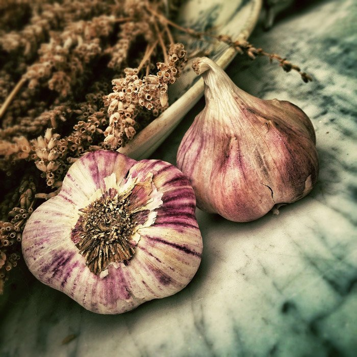 a rustic still life of garlic and dried flowers - symbolism in photography