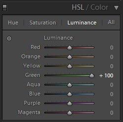 显示如何在Lightroom亮度滑块中使用HSL滑块的屏幕截图