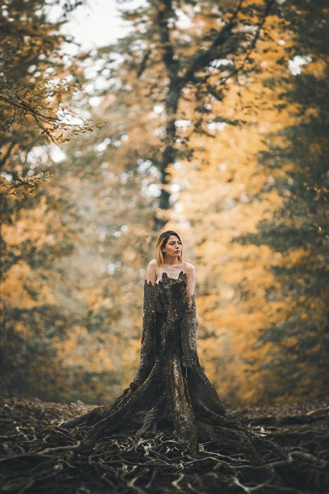 Artistic outdoor portrait of a naked female model posing in a tree trunk