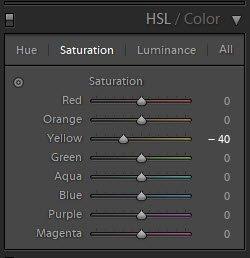 演示如何在Lightroom中使用HSL滑块的截图