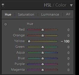 演示如何在Lightroom中使用HSL颜色滑块的截图