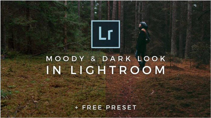 Photo of a woman in the middle of a forest with two different presets on each side, dark moody preset