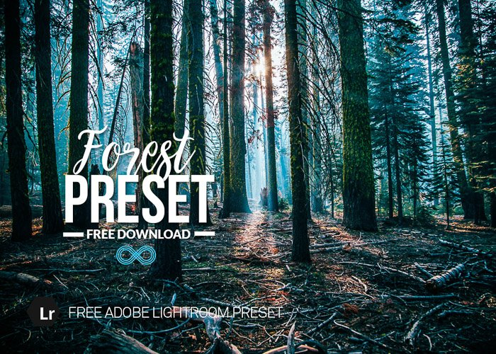 Photonify's Forest Preset