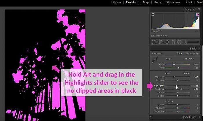 a screenshot of editing a photo using the Lightroom histogram