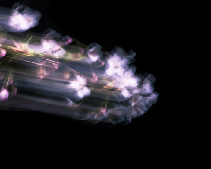 Abstract motion blur photo
