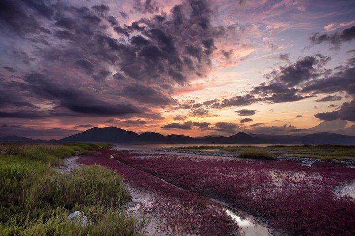 Colorful landscape photo shot at sunset
