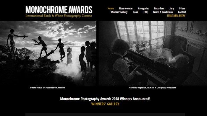 a screenshot of a photography contest website