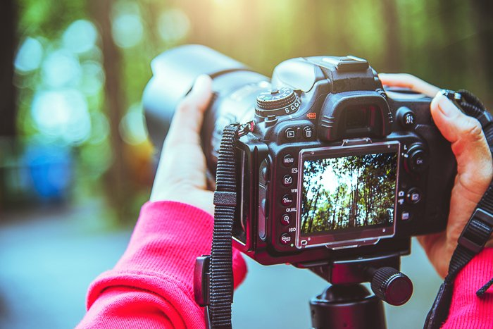 a landscape image being shot through a digital camera