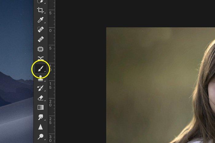 Screenshot of Lightroom paint brush