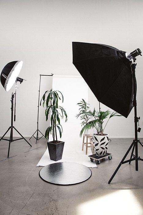 Фото сетапа фотостудии с растениями на белом фоне