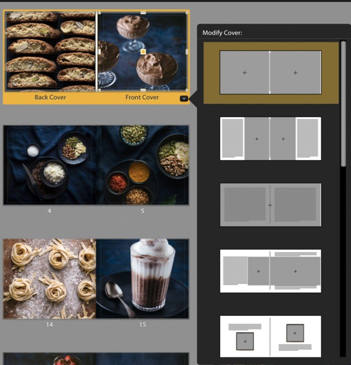 Illustrative photo of Lightroom book module