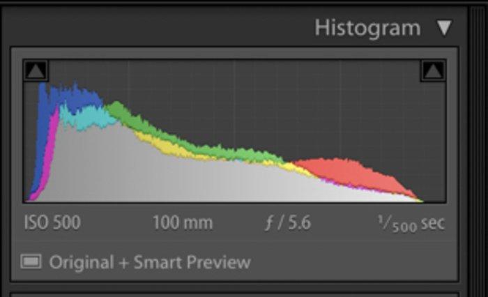 Screenshot of histogram in Lightroom