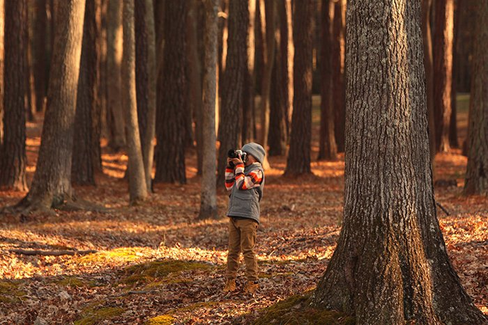 Photo of a little girl taking photos in the woods