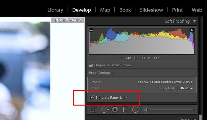显示如何使用Lightroom软校对的屏幕截图