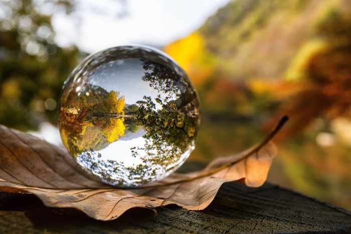a lensball resting on a leaf and reflecting a beautiful Autumn landscape