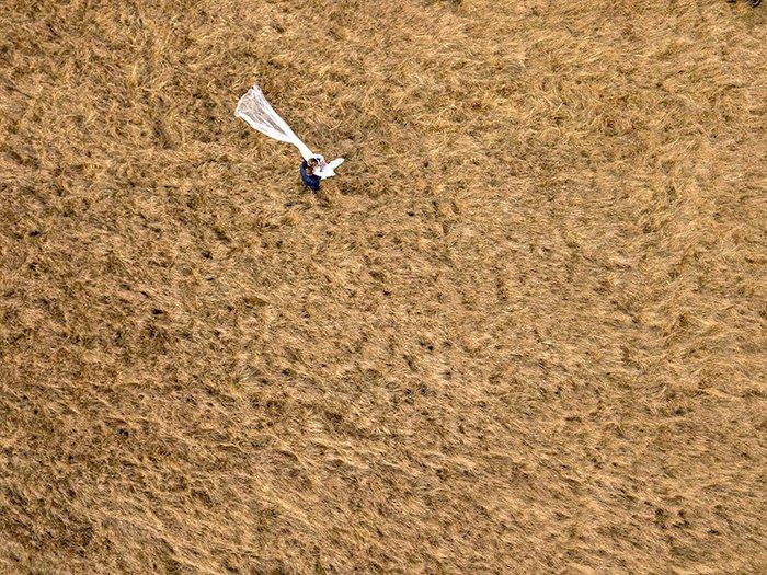 Drone wedding photo on a field