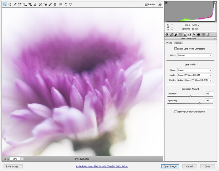 A screenshot showing how to adjust lens vignetting on a photo with Adobe Camera RAW