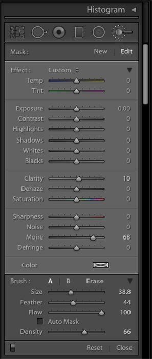 a screenshot showing how to use Lightroom's Adjustment Brush to Get Rid of Moiré Patterns
