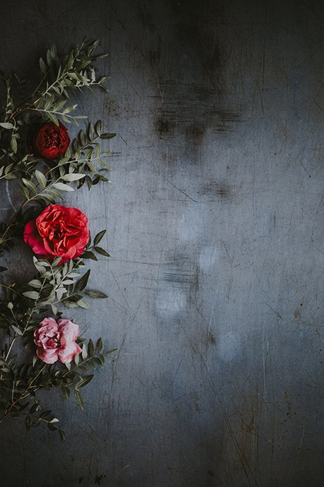 Atmospheric still life of roses against a textured dark background