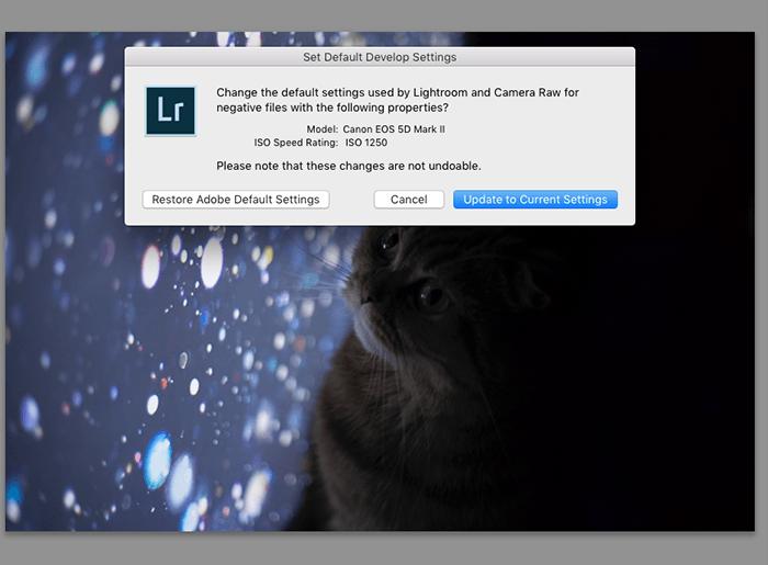 设置默认开发设置的Lightroom弹出窗口的截图