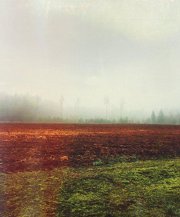 A vintage landscape photo
