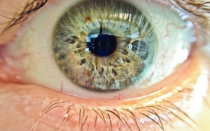 macro photo of a human eye