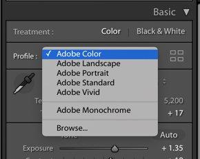a screenshot of choosing a color profile in lightroom
