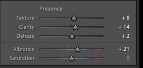 A screenshot of using the presence panel in Lightroom