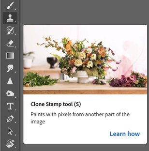 A screenshot of using the clone stamp tool in Photoshop