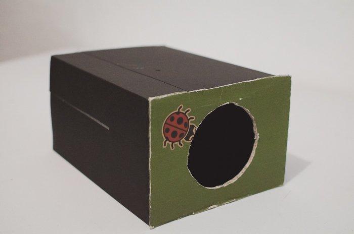 a DIY phone lens projector