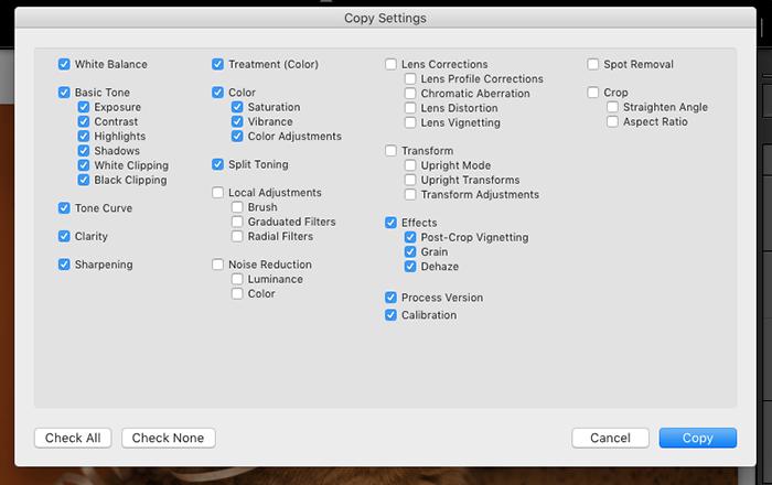 A screenshot of copy settings in Lightroom