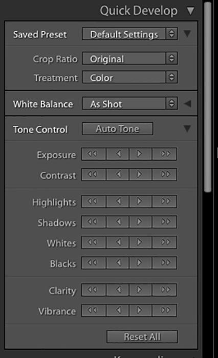 A screenshot of the quick develop module in Lightroom