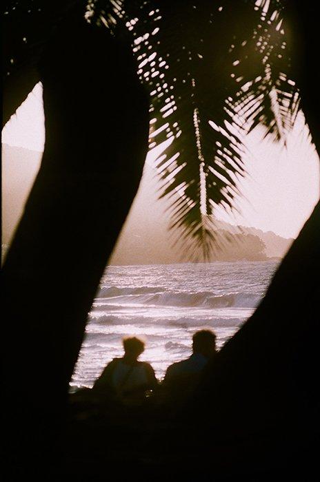 A beach scene shot through the silhouette of trees