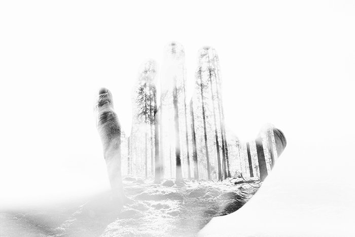 Double exposure of a hand and nature.