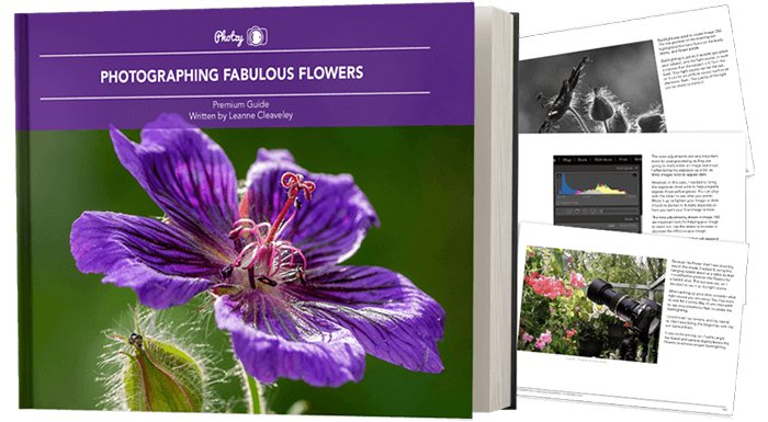 Photzy's Photographing Fabulous Flowers